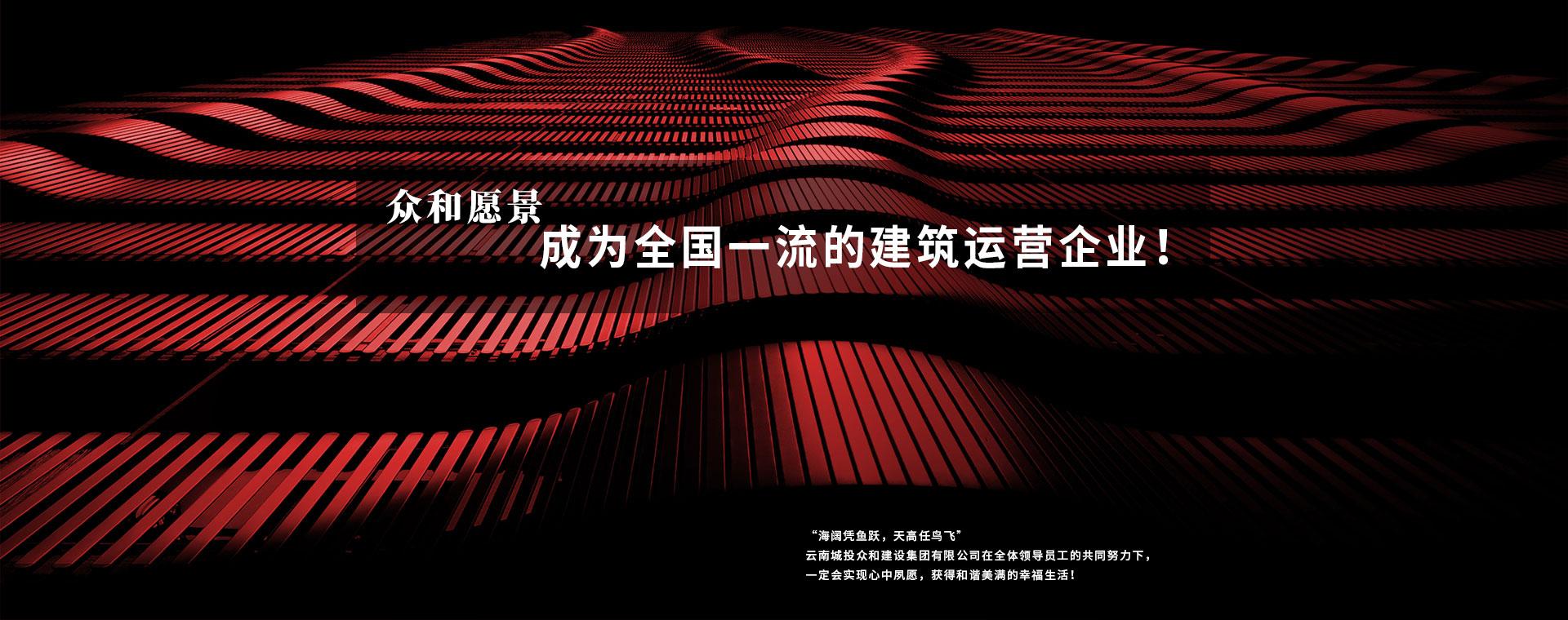 雲南城投二八杠网站建設
